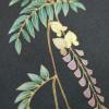 【着物柄図鑑】植物模様―藤