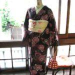 *着物コーディ*黒地に花火のようなピンク色の菊花が華やかな浴衣に百合や撫子やトンボが織り出された夏の絽のつくり帯をあわせて!