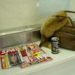 ♪姉妹屋 IN 奈良♪ ぶらり奈良 レポート(^^)
