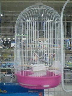 可愛い鳥かご♪