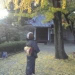 道明寺手づくりの市