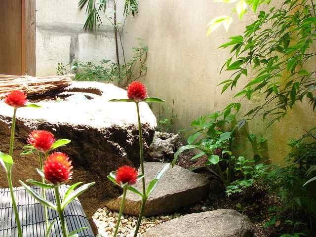 古民家長屋暮らし(赤いお花)