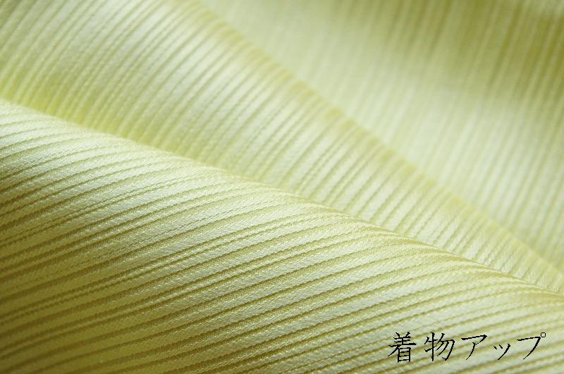 20120205_1_sub5.jpg