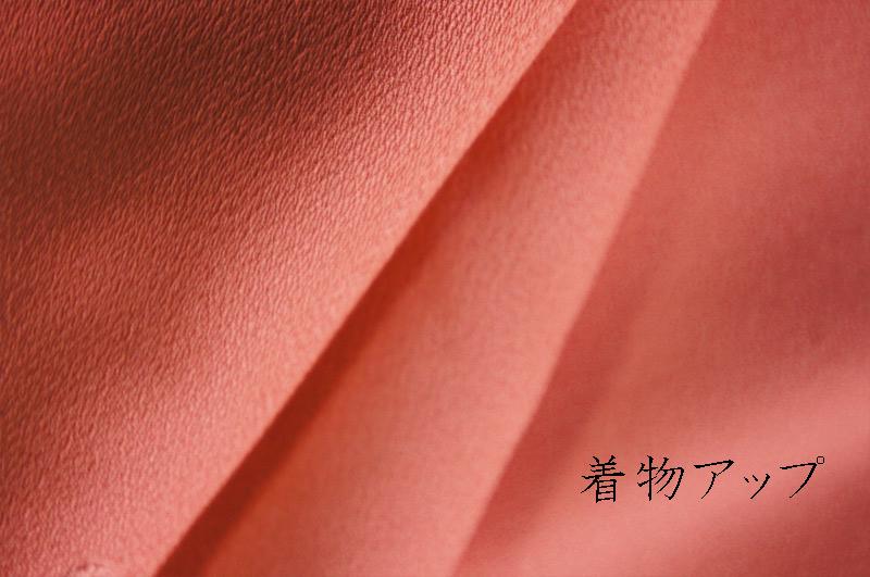 20120205_3_sub5.jpg