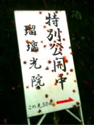 fc2blog_20121227180036e6d.jpg